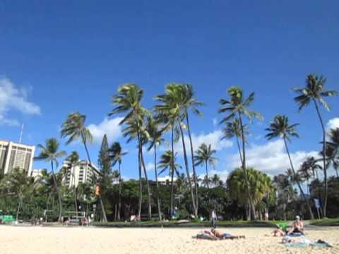 Trade Winds in Waikiki