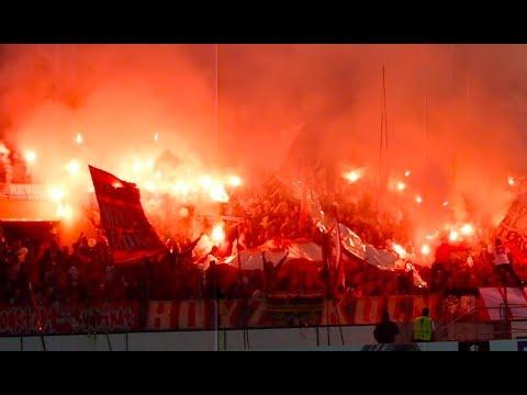 1.FC Köln - Roter Stern Belgrad