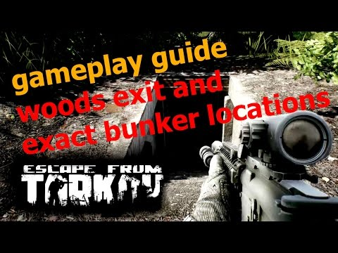EFT [Alpha] Guide - woods exit and exact bunker locations - Escape from Tarkov