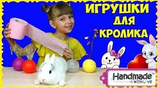 ІГРАШКИ для КРОЛИКА з кульок ЛОЛ, ТУАЛЕТНОГО паперу та іншого за 5 хвилин своїми руками!