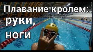 Плавание кролем. Тренировка кроль руки, ноги.(Чтобы пройти полный Ironman нужно не только хорошо бегать и крутить педали, но еще и плавать в открытой воде!..., 2016-02-07T20:48:39.000Z)