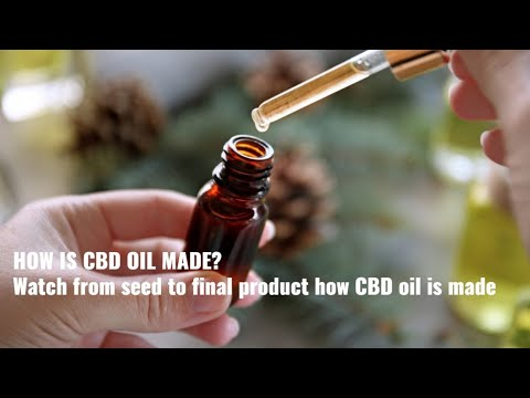 Learn how CBD oil is made from cannabis and hemp