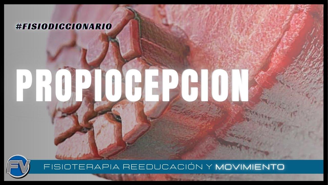 EXPLICANDO LA PROPIOCEPCION Y SUS BENEFICIOS.