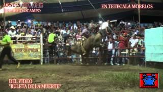 DESTRUCTORES 8 2 14 TETECALA MORELOS H 264
