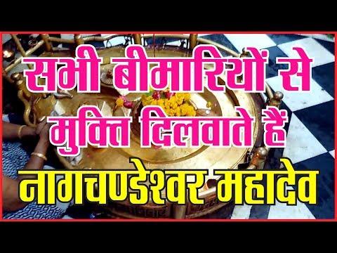 नागचण्डेश्वर महादेव के लाइव दर्शन। उज्जैन के 84 महादेवों में उन्नीसवें महादेव#dharam  #mahakaal