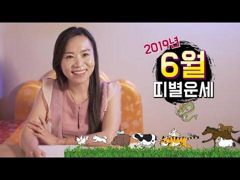 2019 양력 6월 띠별 운세! 대박 나는 띠 vs 조심해야 하는 띠는?! [용한점집 해월신당]