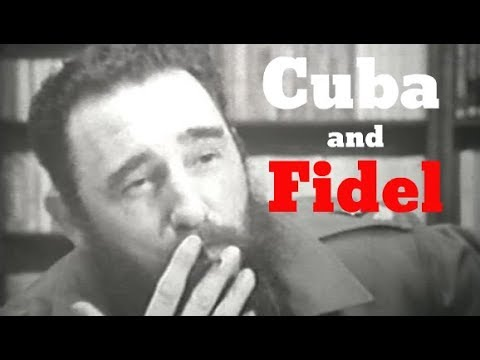 Fidel Castro: Political Views