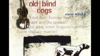 Watch Old Blind Dogs The Wee Wee German Lairdie video