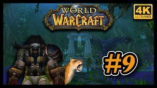 World Of Warcraft FR #9 ▶ La forêt de Désolace ◀ [4K ULTRA HD]