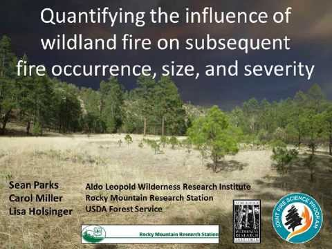 The Ability of Wildfire to Act as a Fuel Treatment