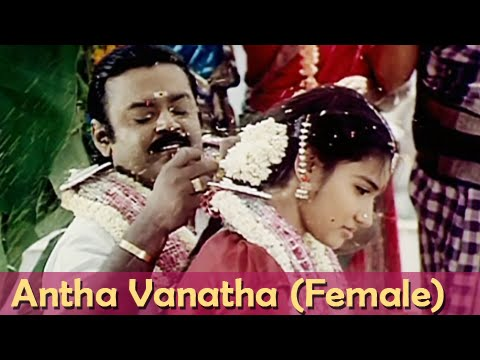 Antha Vanatha (Female) - Vijaykanth, Sukanya - Chinna Gounder - Tamil Song