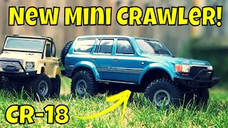 New Mini Crawler 1 18 Hobby Plus CR 18 Toyota Land Cruiser RC Crawler FTX RGT SCX24