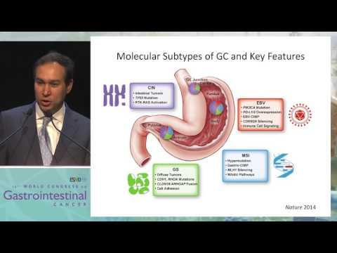 Keynote Lecture 1: Unraveling the taxonomy in gastric cancer