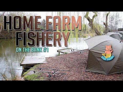 Home Farm Fishery! - On The Bank - Ep.1