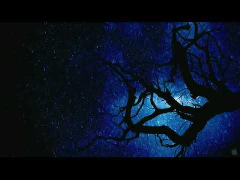 Hubble 3D - Movie Trailer (2010) HD - YouTube