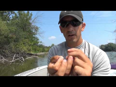 How To Set Up The Double Hook Drop Shot Rig