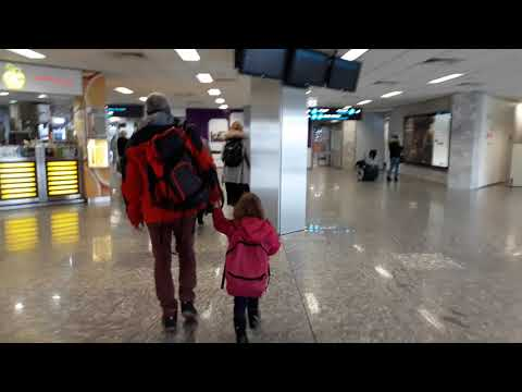 Budapest Airport Arrival Complete Tour | Ferenc Liszt International Airport or Ferihegy