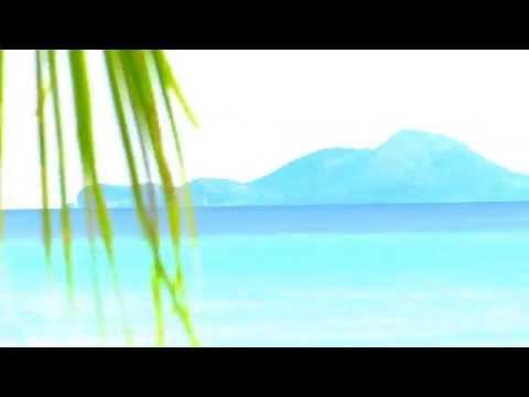 Palawan Coron Malcapuya Island View Shore MOV
