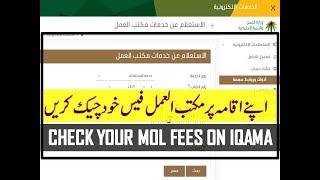 Iqama fees 2019 in saudi arabia