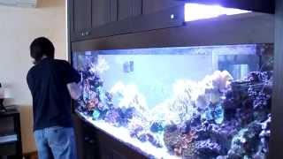 Аквариумный вопрос. Выпуск 1.(В этом ролике мы расскажем об обслуживании аквариума у одного из наших клиентов. Какие операции мы совершае..., 2015-04-09T10:08:13.000Z)