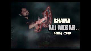 SYED RAZA ABBAS ZAIDI 2013 NOHAY BHAIYA ALI AKBER A.S