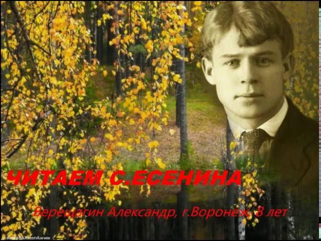 Изображение предпросмотра прочтения – АлександрВерещагин читает произведение «Собаке Качалова» С.А.Есенина