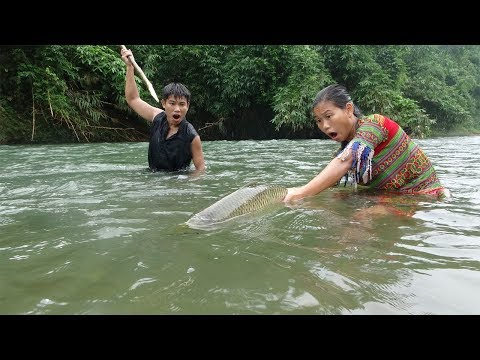 Survival skills - Skills catching big fish in River - Primitive life Cooking delicious fish