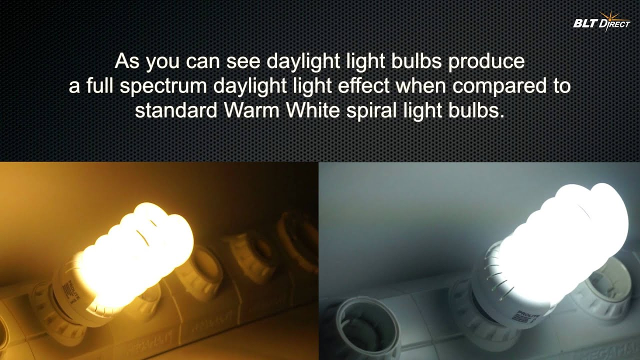 Cool white vs warm white led lights - Energy Saving Spiral Colour Temperature Comparisons Warm White V Daylight Youtube