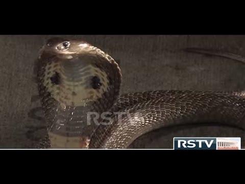 RSTV Documentary - The Big Four
