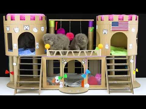 كيف تصنع بيت للقطط من الكارتون.. How to make a house for cats from cardboard
