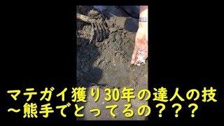 千葉港に潮干狩りでマテガイとりの名人のおじさんに動画撮影させてもら...