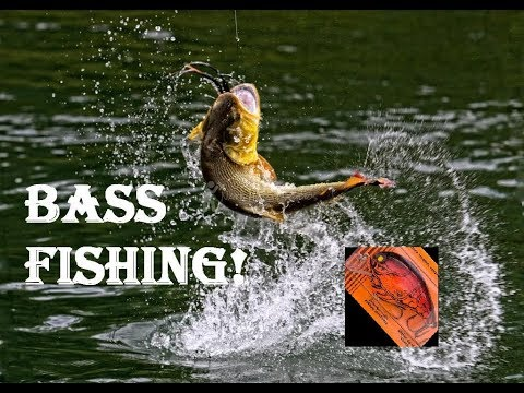 [4K]  Bass Fishing At The Rouge River Toronto - An Amazing Weekend +26C September!!