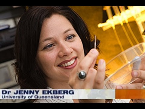 National Nine News Report on my previous research on Cone Snail Toxins and Pain