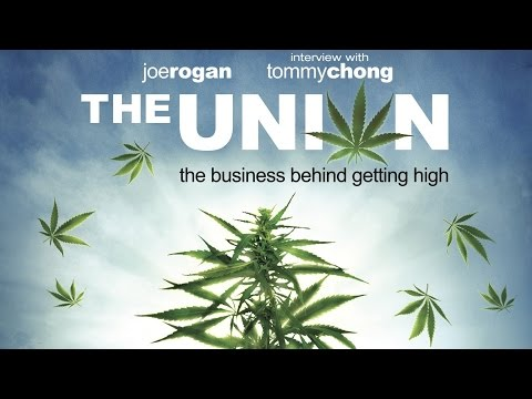 The Union - The Business Behind Getting High (Documentary)