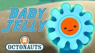 Octonauts - Baby Jelly | Cartoons for Kids | Underwater Sea Education