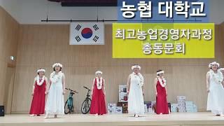 농협대학교 최고농업경영자과정 총동문회  2019 총동문…