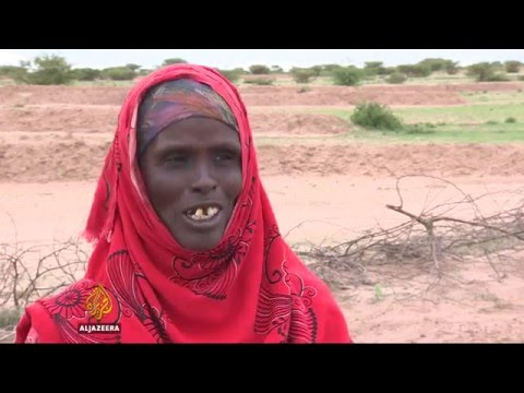 Somalia drought: Tens of thousands in need of food