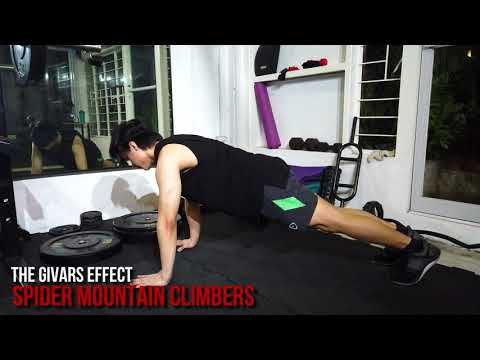 Spider Mountain Climbers