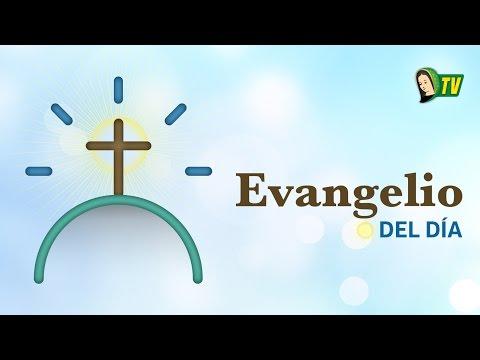 EVANGELIO DEL DÍA – 30 de Julio 2015 (Mateo 13,47-53)