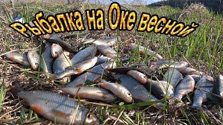 Рыбалка на ОКЕ . Первая рыбалка в сезоне.