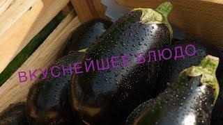🔥Летнее блюдо из баклажан 🍆 🔥Самое вкусное летнее блюдо🔥