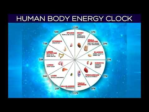 Our body energy clock [what our body is telling us]