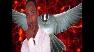 best of 2013 somali music Run Iyo Been By Istiinle...