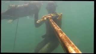 Rhode Island Striper Spearfishing and Fishing Trip
