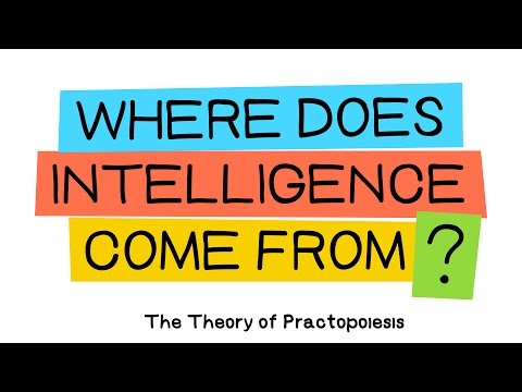 Practopoiesis: Where does intelligence come from?