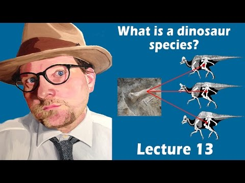 What is a dinosaur species?