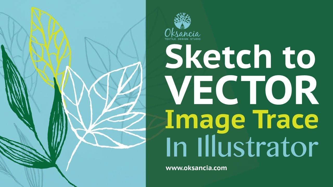 Video: How to live trace in Illustrator  Turn a sketch into