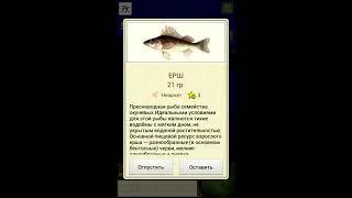 Мобильная Русская Рыбалка 1.0.3.0 (Java)