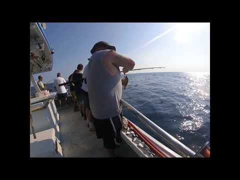 Sea Spirit Deep Sea Fishing   Daytona Beach, FL 2018