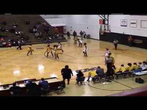 UDC Women's Basketball vs. LIU Post